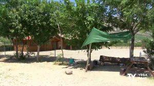 Orihuela apuesta por los huertos urbanos para el autoabastecimiento de los vecinos