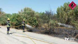 Incendio de matorral y pino en La Campaneta, en Orihuela