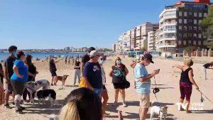 Concentración por una playa canina «digna» en Torrevieja