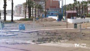 Orihuela y Torrevieja, en la lista de los 50 municipios más urbanizados del litoral español