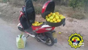 Policía Local de Albatera detectó a un individuo que circulaba en moto con bolsas de naranjas de dudosa procedencia