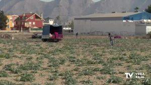 Un informe de Conselleria cuestiona las condiciones de higiene y seguridad en el campo