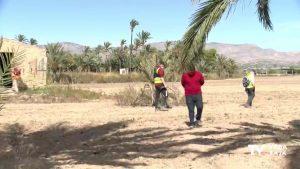 Un equipo de arqueólogos busca la fosa con las víctimas del campo de concentración de Albatera