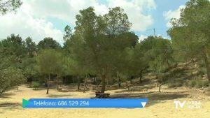 Pilar de la Horadada celebra la Semana Europea de la Prevención de Residuos