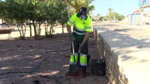 Usuarios de ADIS se hacen cargo de la limpieza viaria de la urbanización La Finca (Algorfa)