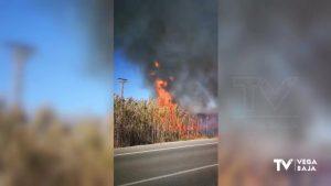 Incendio en el Hondo de Amorós: 2.000 metros cuadrados se ven afectados por el fuego