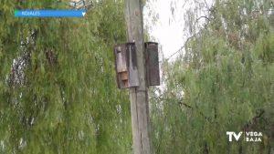 Se colocan 30 cajas refugio para murciélagos en varios puntos de Rojales