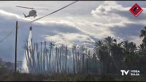 7.000 metros cuadrados se ven afectados por el fuego en un vivero de palmeras de Albatera