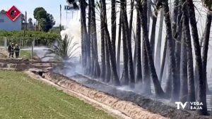 Nuevo incendio de vegetación en la Vega Baja: el fuego alcanza unas palmeras en Almoradí