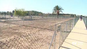Ya están habilitadas las 32 parcelas de huertos urbanos para uso de los oriolanos