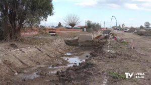 Vecinos de San Fulgencio denuncian que las obras en un azarbe están acabando con árboles centenarios