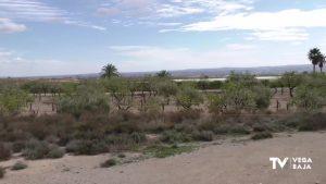 Placas fotovoltaicas abaratarán el coste del agua para regar el campo de La Murada