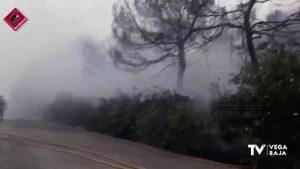 Aprobado el plan local de prevención de incendios forestales en San Miguel de Salinas