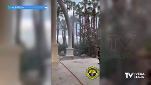 El fuego en una palmera, a punto de poner en peligro el Parque de la Huerta de Albatera