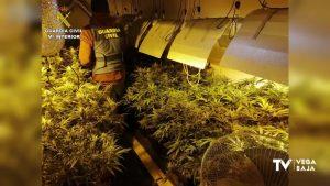 Una agente de Policía Local de Torrevieja, detenida por presunto delito de tráfico de drogas