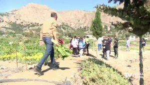 El Colegio Diocesano San José Obrero de Orihuela trabaja con invernadero y huerto escolar
