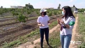 Así es Marina Pérez: la joven agricultora de Rojales nombrada Mujer Rural 2020