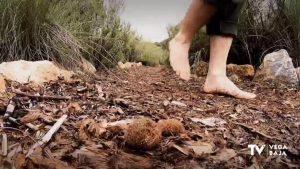 Andar descalzo por el área natural de Río Seco en Pinar de Campoverde ya es posible