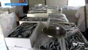 Más del 14% del producto local alicantino se pesca en Torrevieja