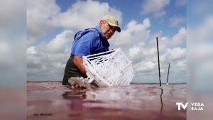 Los barcos de sal cuajan en la laguna rosa de Torrevieja un año más