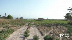 San Isidro comenzará unas segundas excavaciones en el campo de concentración