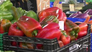 Una alimentación saludable en verano es posible