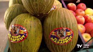 Estas son las frutas y verduras de temporada para comer en el mes de septiembre