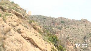 Una brigada forestal eliminará el cactus de Arizona de la Sierra de Orihuela