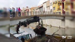 El ayuntamiento de Orihuela retira cañas del río y la CHS avisa de que primero se reduce el caudal